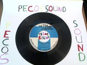 Hud-2 vinyl photos 1025