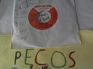 Hud-2 vinyl photos 1059