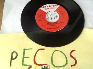 Hud-2 vinyl photos 1063