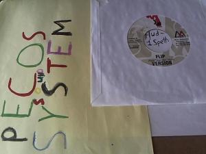 Hud-2 vinyl photos 1068