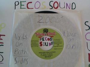 Hud-2 vinyl photos 1204