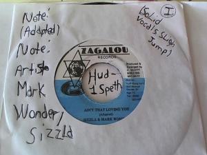 Hud-2 vinyl photos 1499