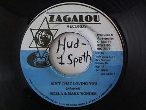 Hud-2 vinyl photos 1506