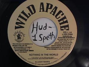Hud-2 vinyl photos 1678