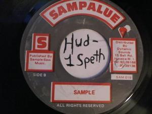 Hud-2 vinyl photos 2202