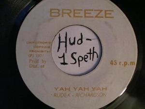 Hud-2 vinyl photos 2229