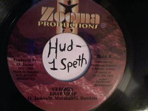 Hud-2 vinyl photos 2253