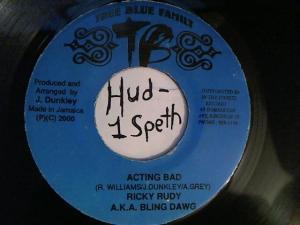 Hud-2 vinyl photos 2313