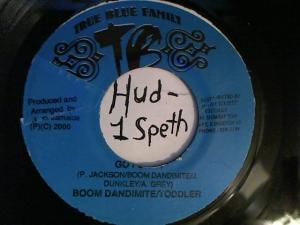 Hud-2 vinyl photos 2314