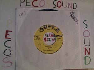 Hud-2 vinyl photos 2462