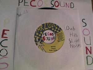 Hud-2 vinyl photos 2610