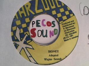 Hud-2 vinyl photos 2612