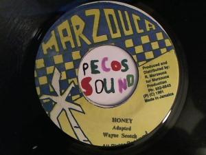 Hud-2 vinyl photos 2613