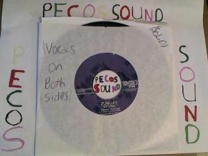 Hud-2 vinyl photos 2796