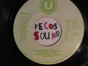 Hud-2 vinyl photos 2968