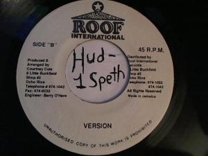 Hud-2 vinyl photos 2971