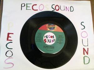 Hud-2 vinyl photos 3089