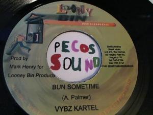 Hud-2 vinyl photos 3113
