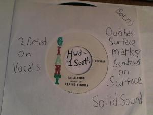Hud-2 vinyl photos 3199