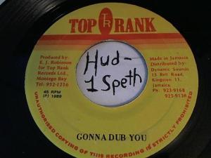 Hud-2 vinyl photos 324