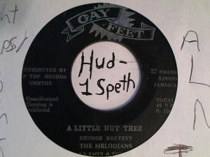 Hud-2 vinyl photos 3383