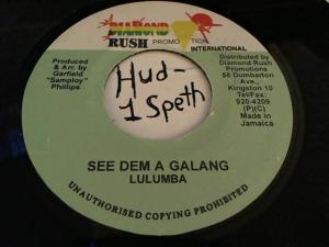 Hud-2 vinyl photos 3804
