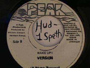 Hud-2 vinyl photos 3842