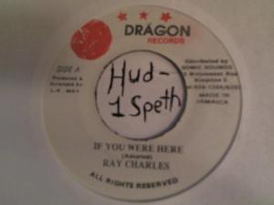 Hud-2 vinyl photos 411