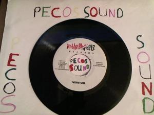 Hud-2 vinyl photos 4182