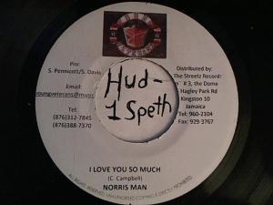 Hud-2 vinyl photos 4199