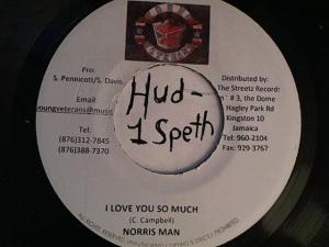 Hud-2 vinyl photos 4200