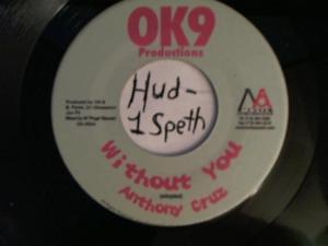 Hud-2 vinyl photos 4212