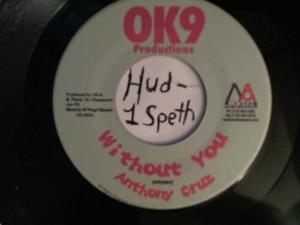Hud-2 vinyl photos 4213