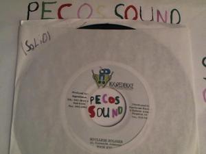 Hud-2 vinyl photos 4231