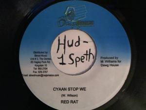 Hud-2 vinyl photos 439