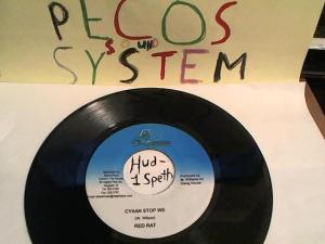 Hud-2 vinyl photos 442