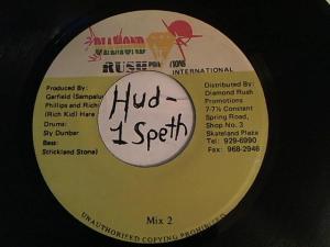 Hud-2 vinyl photos 480
