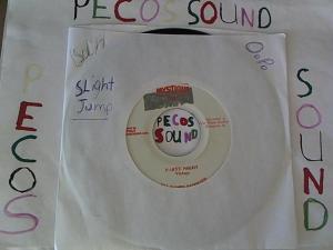 Hud-2 vinyl photos 4873