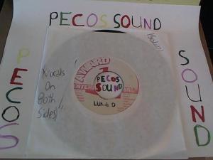 Hud-2 vinyl photos 4996
