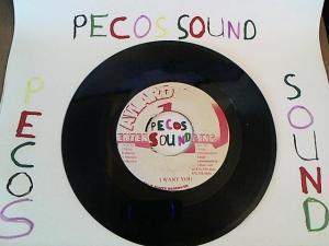 Hud-2 vinyl photos 5009
