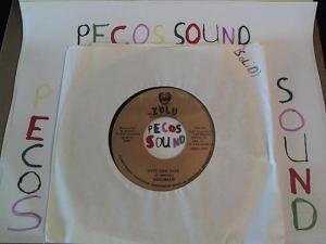 Hud-2 vinyl photos 5063