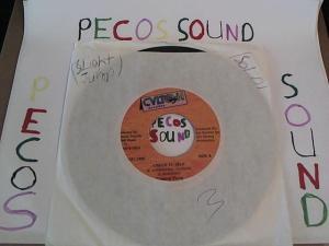 Hud-2 vinyl photos 5112