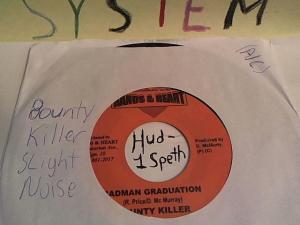 Hud-2 vinyl photos 528