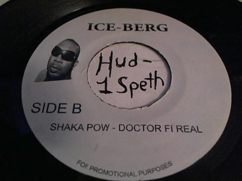 Hud-2 vinyl photos 601