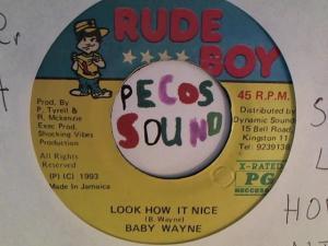 Hud-2 vinyl photos 6687