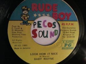 Hud-2 vinyl photos 6689