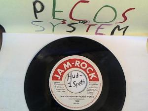 Hud-2 vinyl photos 669