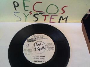 Hud-2 vinyl photos 758