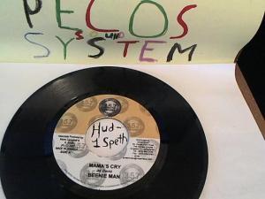 Hud-2 vinyl photos 791