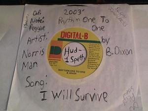 Hud-2 vinyl photos 918
